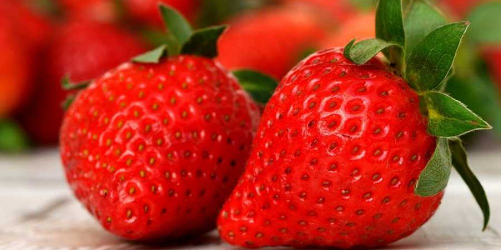 Healthy Snacks: Good For You And Your Teeth
